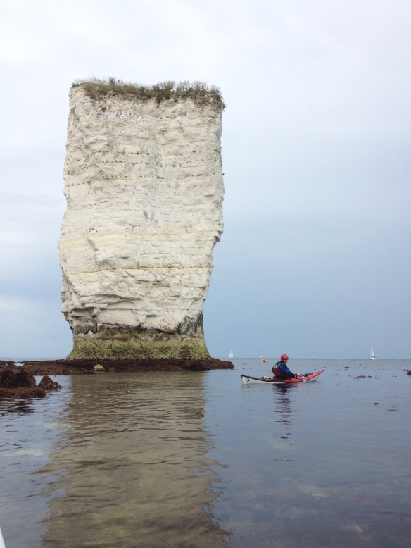 old harry 11