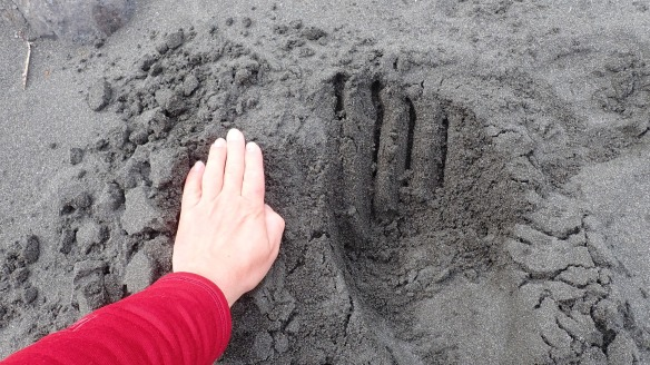 bear hand